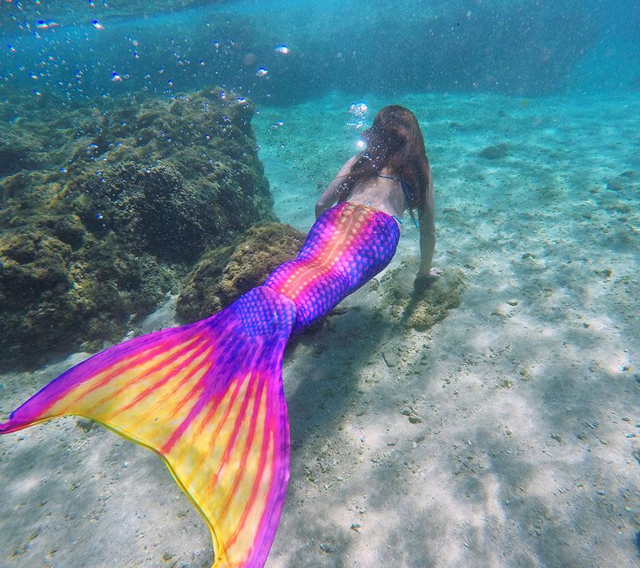 美人魚潛水(一日)|初階課程