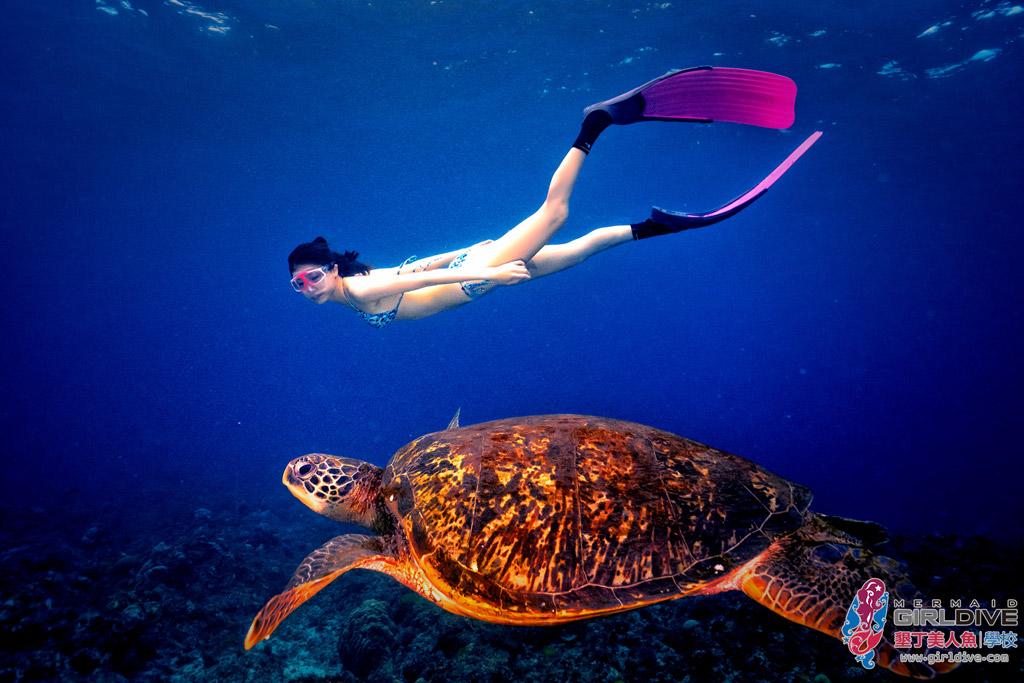 美人魚學校自由潛水