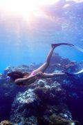 Freedive,自由潛水,AIDA國際,證照課程,墾丁