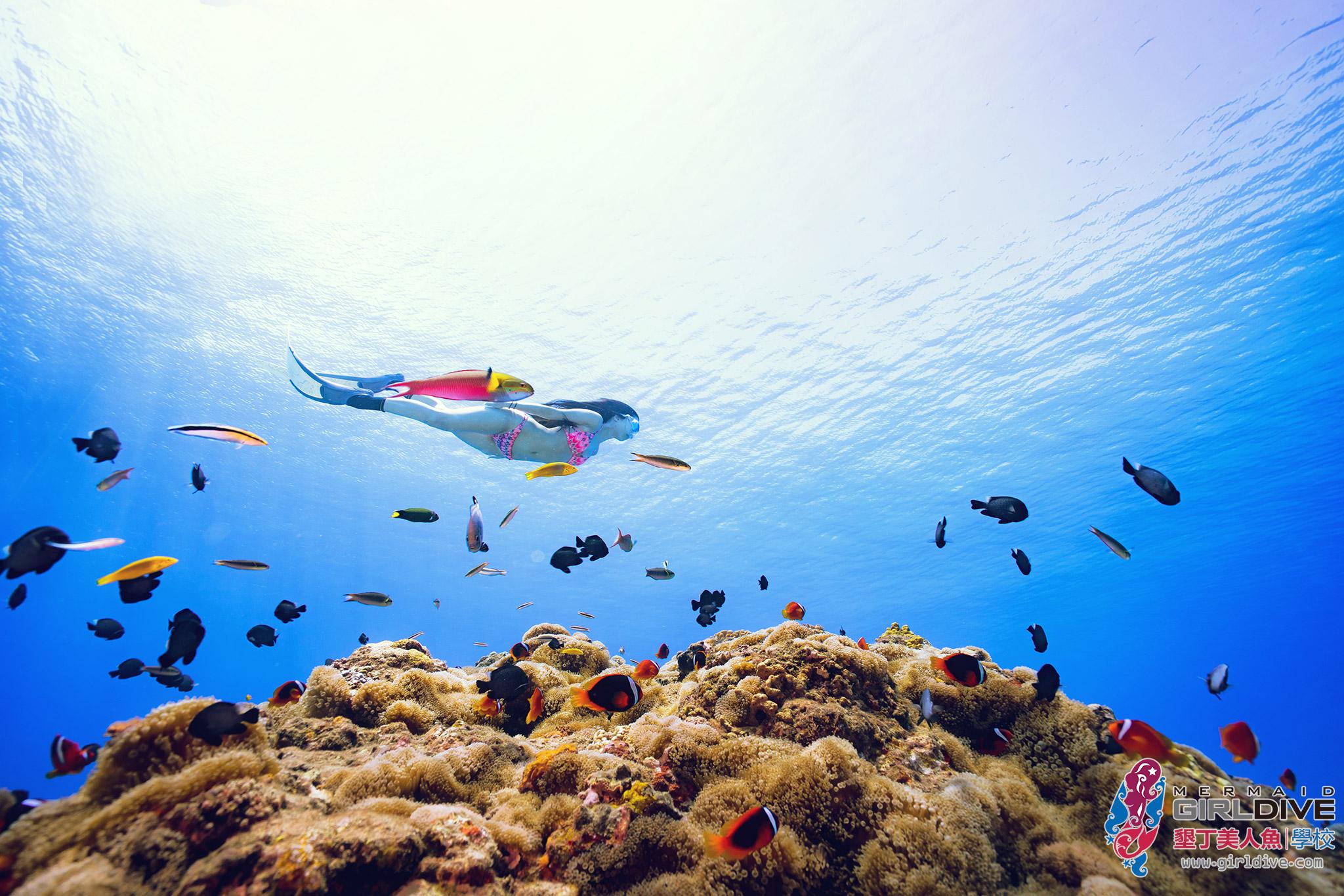 自由潛水,體驗,證照,課程,墾丁,aida