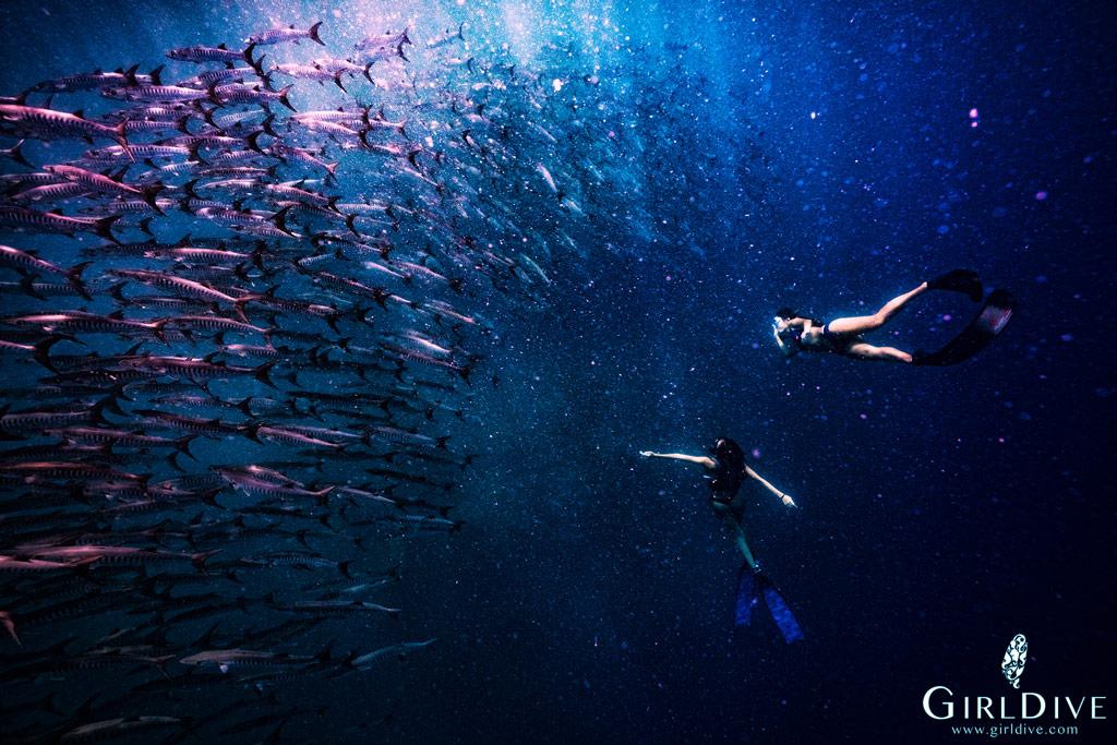 自由潛水,體驗,證照,課程,aida2,海島