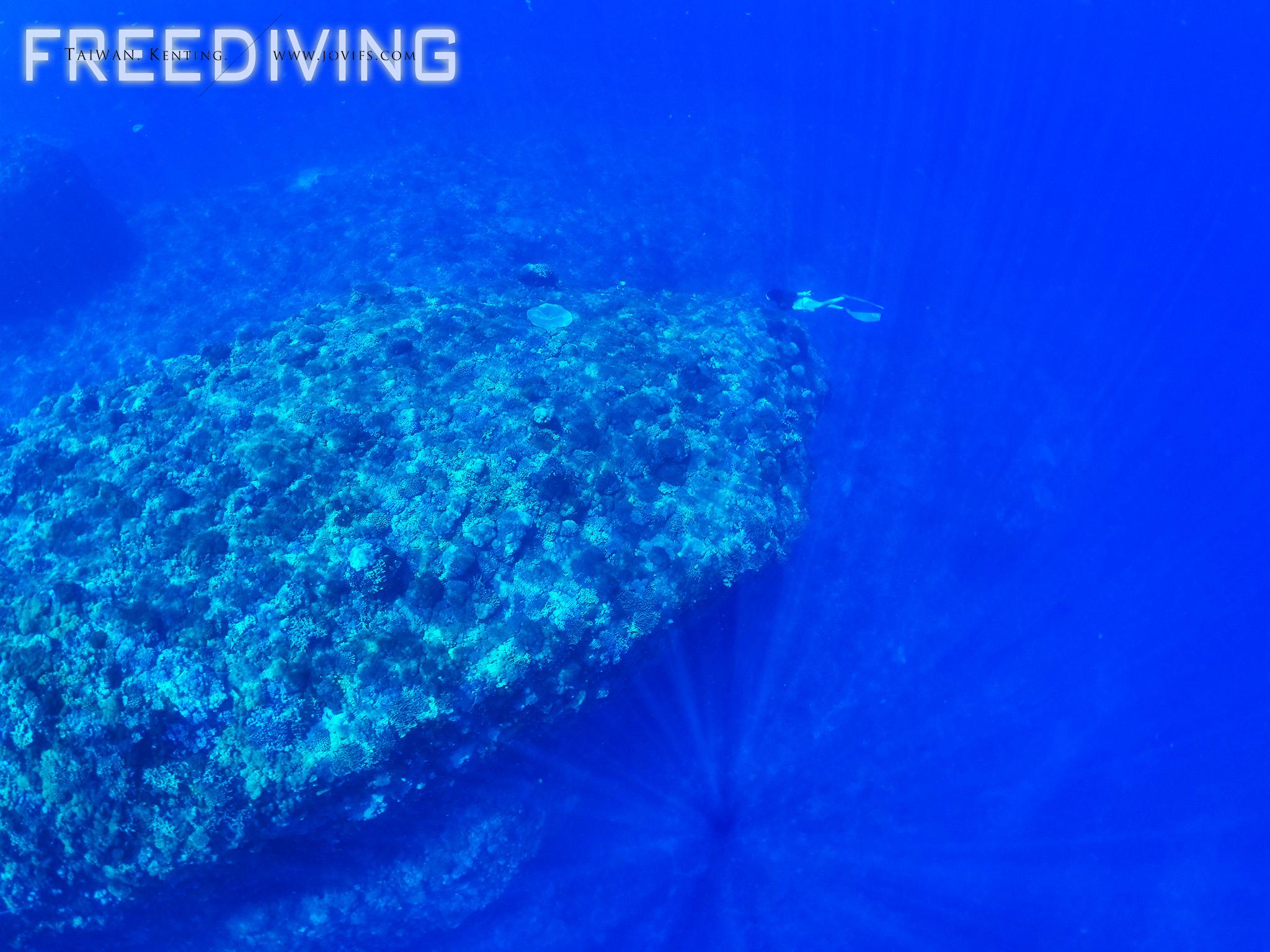 國際自由潛水AIDA1課程
